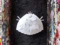 10.virgen de papel