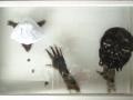 38.Magia, 2006