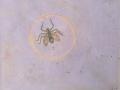 2019 La-mosca-y-su-hociquito-devastador-jpg